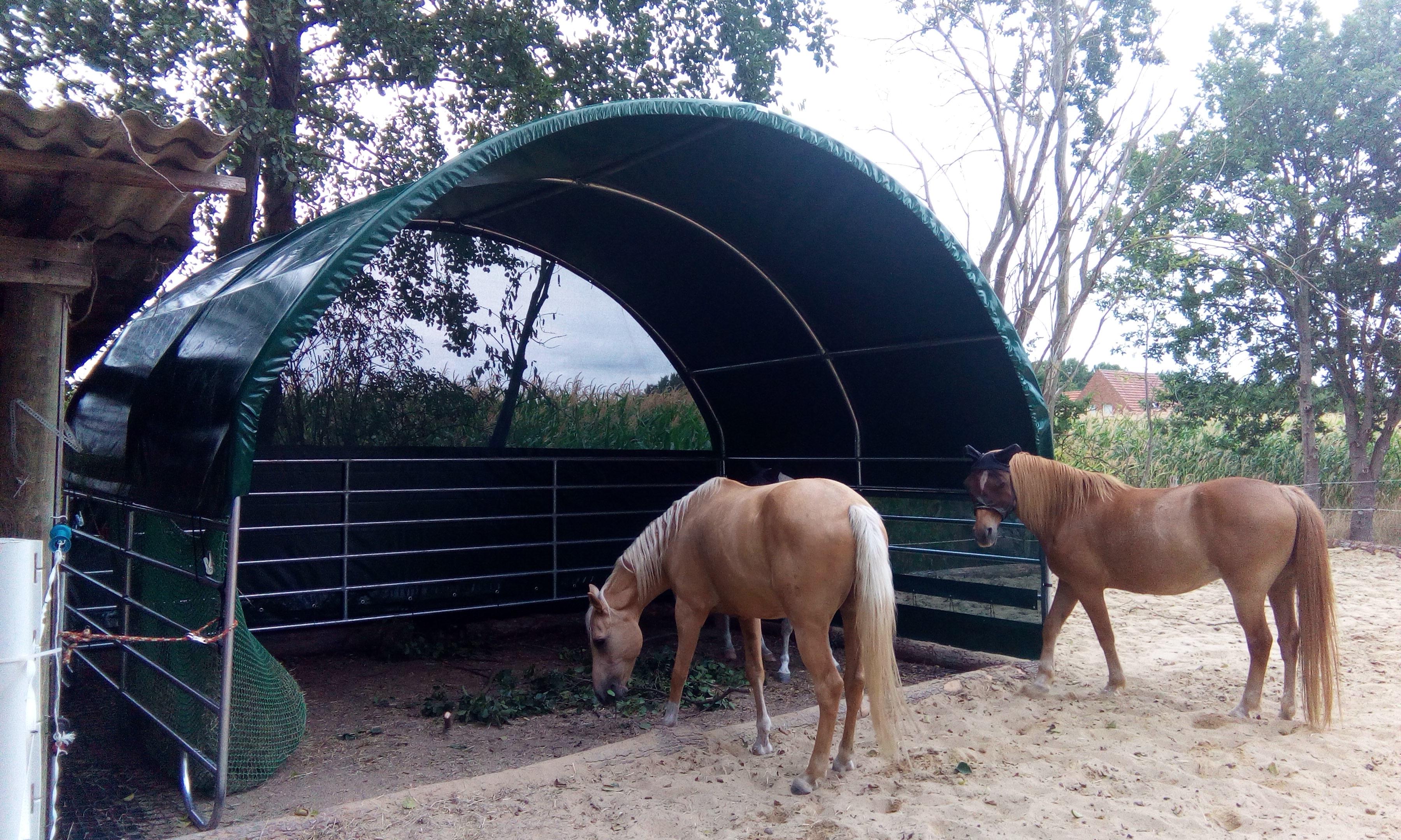 Weidezelt Pferde mit Panel seitlich