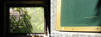 Windschutznetz für Fenster